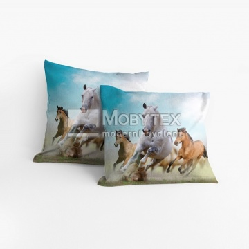 Povláček Divocí koně