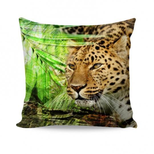 Povláček Leopard