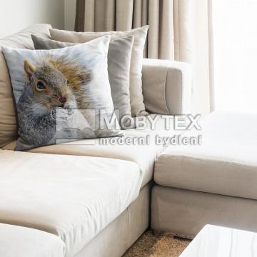Dekorační povlak Squirrel