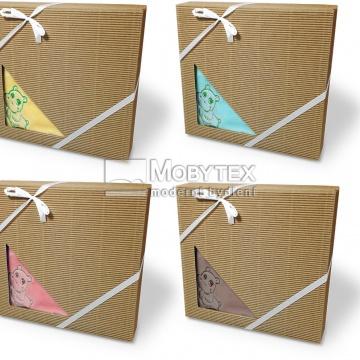 Dětská deka mikroflanel dárková krabička