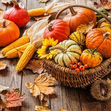 Prostírání Matějovský Podzimní sklizeň
