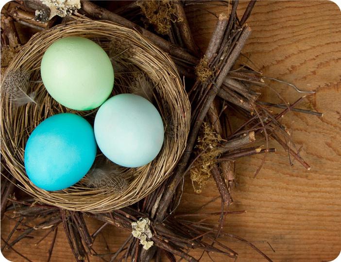 Prostírání Matějovský Velikonoce - hnízdo