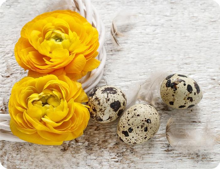 Prostírání Matějovský Velikonoce - žluté