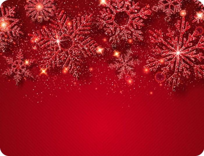 Prostírání Matějovský Vánoce Třpytivé